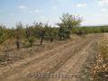 P.F.vand in Miroslava jud.Iasi ,teren extravilan(arabil) 5000mp